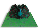 Peacock project, The Pocket Paper Engineer, Volume 3